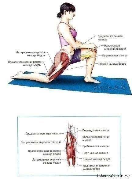 Упражнения на растяжку2 (432x584, 91Kb)
