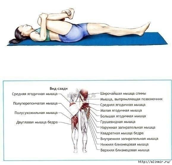 Упражнения на растяжку3 (579x555, 118Kb)