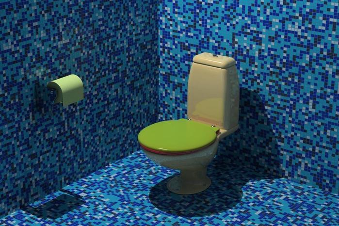 унитаз туалет11 (700x466, 316Kb)
