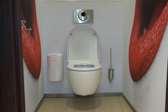 унитаз туалет9 (550x367, 74Kb)