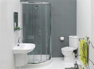 унитаз туалет6 (320x237, 33Kb)