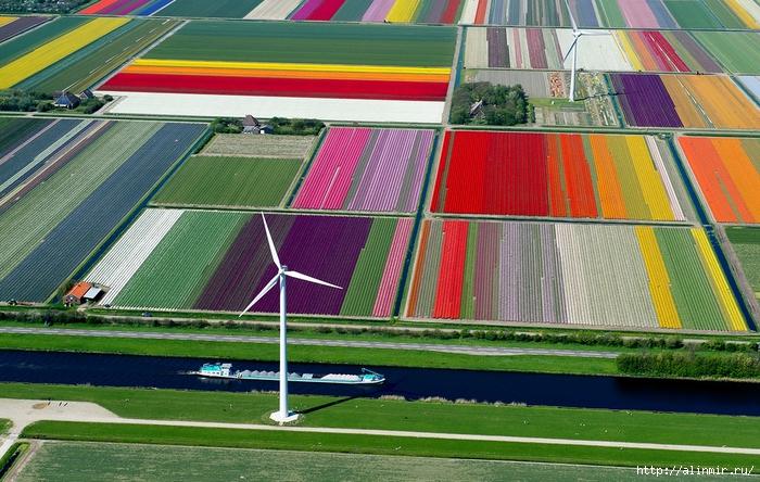 Нидерланды8 (700x444, 329Kb)