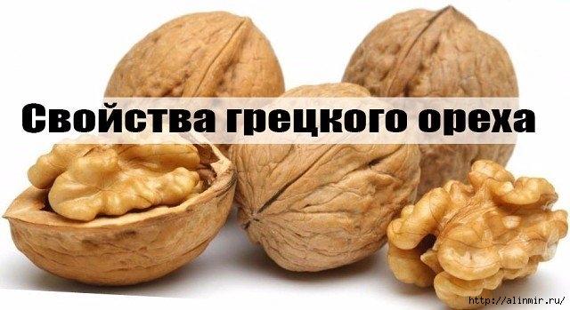 5283370_greckii_oreh (640x349, 125Kb)