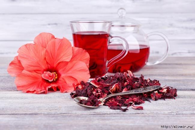 Полезные свойства и противопоказания красного чая каркадэ