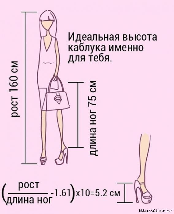 5283370_rasschet_visoti_kablyka (567x700, 182Kb)